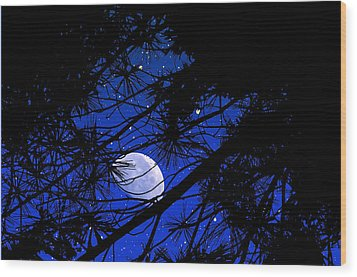 Wood Print featuring the photograph Starry Starry Night by Mike Flynn