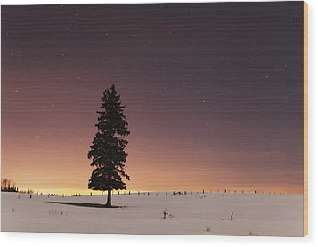 Stars In The Night Sky With Lone Tree Wood Print by Susan Dykstra