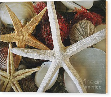 Stars Of The Sea Wood Print by Colleen Kammerer