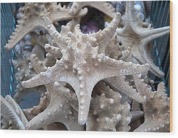 Stars Of The Timeless Sea Wood Print