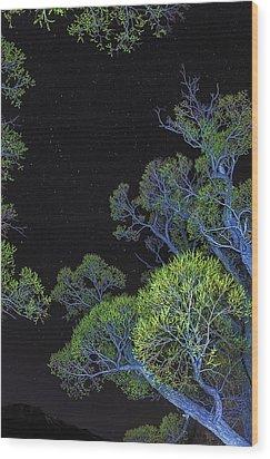 Stars Out Tonight Wood Print