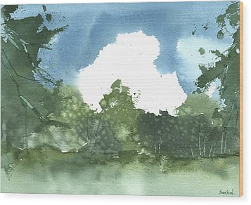 State Park Plein Air 7-20-13 Wood Print by Sean Seal
