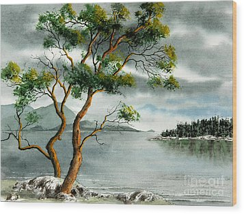 Stately Arbutus Wood Print by Frank Townsley