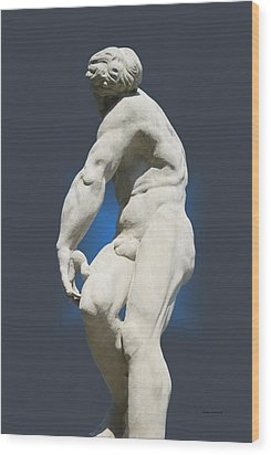 Statue 10 Wood Print by Thomas Woolworth