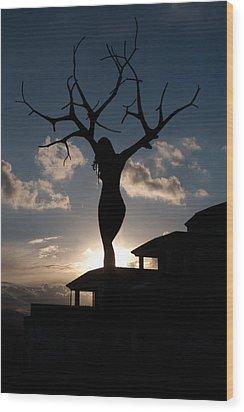 Statue El Vergel Spain Wood Print by Herbert Seiffert