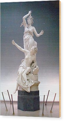 Statue In Paris Wood Print by Kay Gilley