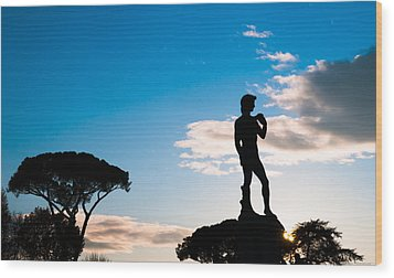 Wood Print featuring the photograph Statue Of David by Avian Resources