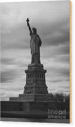 Statue Of Liberty New York City Wood Print by Joe Fox