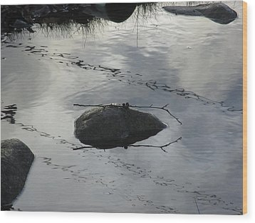 Wood Print featuring the photograph Stay In The Middle My Friend by Marie Neder
