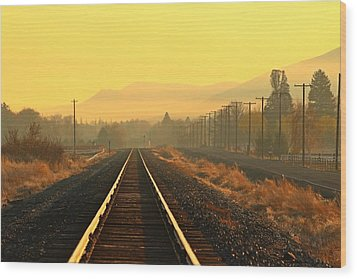 Wood Print featuring the photograph Stay On Track by Lynn Hopwood