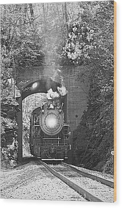 Wood Print featuring the photograph Steam Train Tunnel by Tammy Schneider