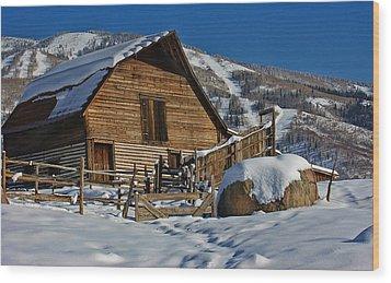 Steamboat Barn Wood Print by Don Schwartz