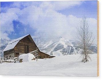 Steamboat Springs Wood Print by Teri Virbickis