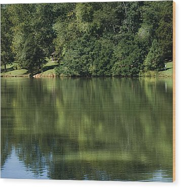 Steele Creek Park Reflections Wood Print