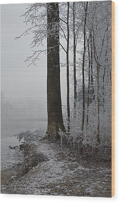 Steep And Frost Wood Print