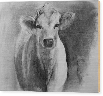 Steer- Drawing From Life Wood Print