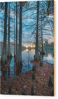 Steinhagen Reservoir Vertical Wood Print