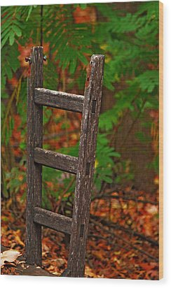 Step Down Wood Print