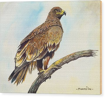 Wood Print featuring the painting Steppe Eagle by Anthony Mwangi