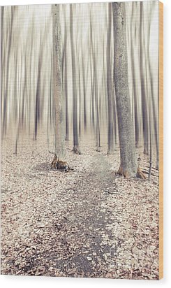Steppin' Through The Last Days Of Autumn Wood Print by Hannes Cmarits