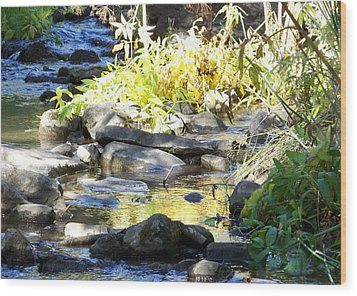 Wood Print featuring the photograph Stepping Stones by Sheri Keith
