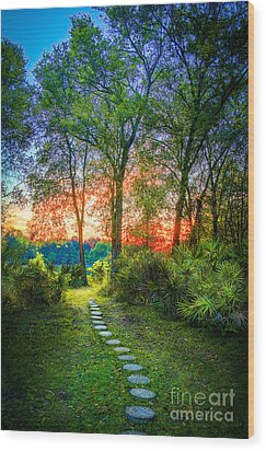 Stepping Stones To The Light Wood Print by Marvin Spates