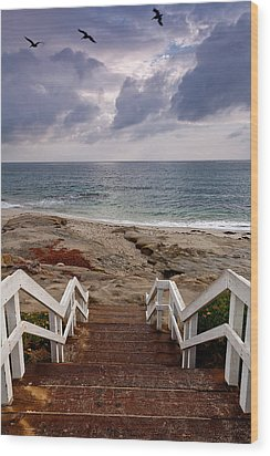 Steps And Pelicans Wood Print by Peter Tellone