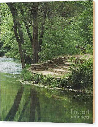 Wood Print featuring the photograph Steps At Blue Spring by Julie Clements
