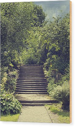 Steps Wood Print by Amanda Elwell