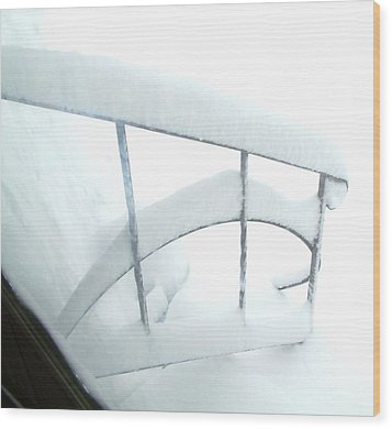 Steps Covered In Snow Wood Print by Mike McCool