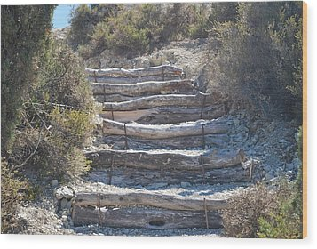 Steps In The Woods Wood Print