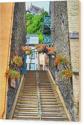 Steps Of Old Quebec Wood Print by Mel Steinhauer