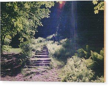 Steps To Madame Sherri Castle Wood Print by David Fiske