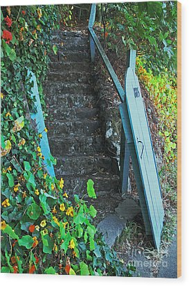 Steps To Somewhere Wood Print by Connie Fox