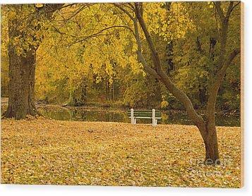 Stewart Park Ithaca Wood Print