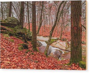 Stickney Brook 2 Wood Print by Jeremy Farnsworth