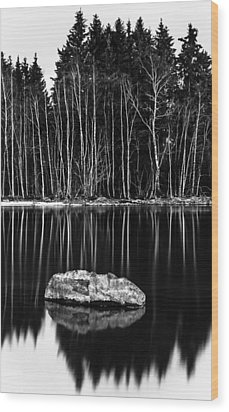 Sticks And Stones Wood Print