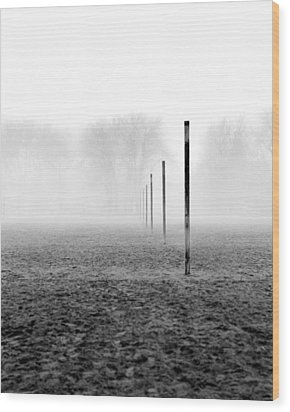 Sticks Ashbridges Bay Toronto Canada Wood Print by Brian Carson