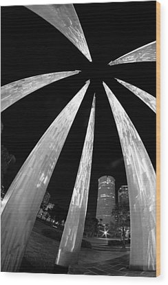 Wood Print featuring the photograph Sticks Of Fire At University Of Tampa by Daniel Woodrum