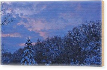 Still Chill Wood Print by Elizabeth Sullivan