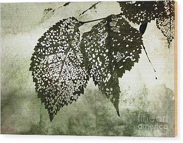 Still Together Wood Print by Ellen Cotton