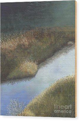 Still Water Wood Print by Ginny Neece