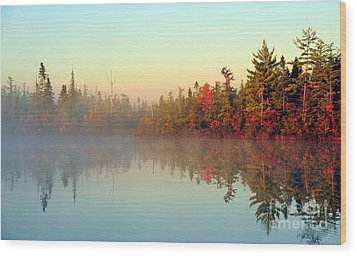 Still Water Marsh Wood Print by Terri Gostola