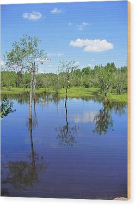 Wood Print featuring the photograph Still Waters by Jim Whalen
