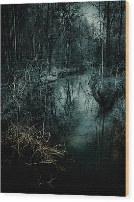 Still Waters Run Deep Wood Print
