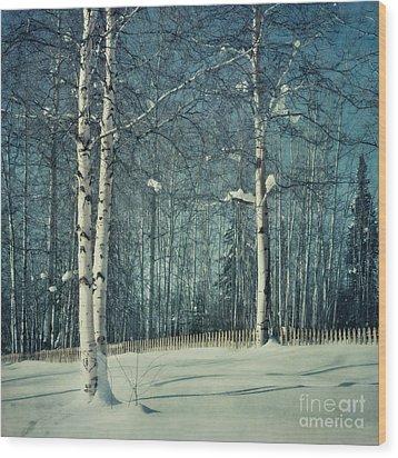 Still Winter Wood Print by Priska Wettstein