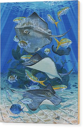 Stingray City Re0011 Wood Print by Carey Chen