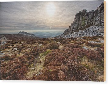 Stiperstones National Nature Reserve Wood Print