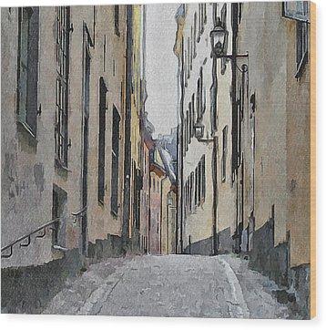 Stockholm 13 Wood Print by Yury Malkov