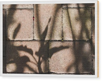 Stone And Light 10 Wood Print
